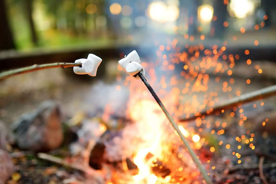Roasting marshmallows by the campfire