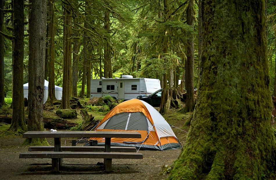 Tent in campground with RV in background